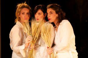 http://www.arab-hebrew-theatre.org.il/en/show.php?id=140