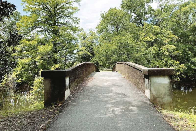 Concrete bridge surrounded by greenery